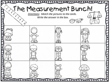 The Measurement Bunch