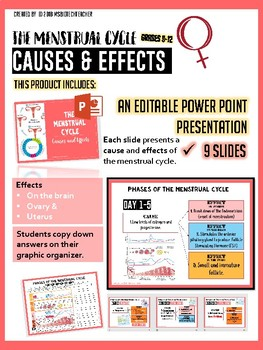 The Menstrual Cycle-Cause and Effect PPT, Graphic Organizer & Game High School