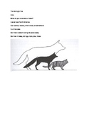 The Midnight Fox- Guided Reading Group/Literature Circle Notes