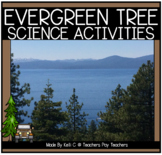 Evergreen Trees - Science Activities about The Mighty Evergreen