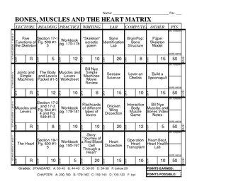 The Miracle Matrix: Regular Matrix Excel File