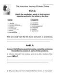 The Miraculous Journey of Edward Tulane Quiz #1
