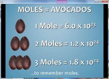 The Mole Music Video - Avogadro Style