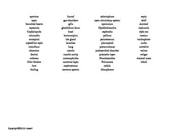 The Molluscs Vocabulary Word Search for Zoology