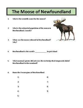 The Moose of Newfoundland - Reading Comprehension and Substitute Plan