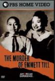 The Murder of Emmett Till Video Guide