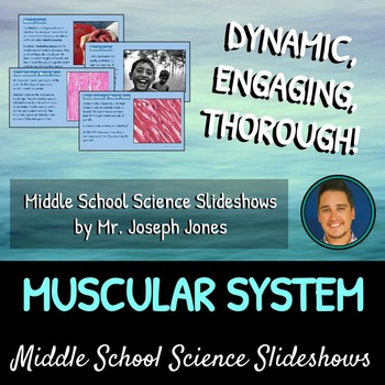 The Muscular System: A Life Sciences Slideshow!