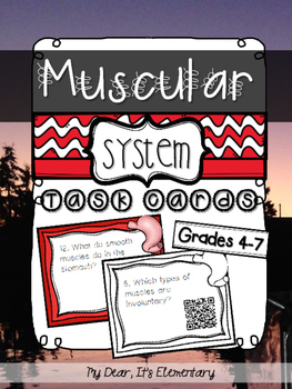 The Muscular System {QR TASK CARDS}