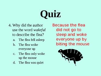 The Napping House Describing Words