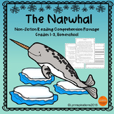 Winter Animals - The Narwhal Reading Comprehension Passage For Grades 1-3