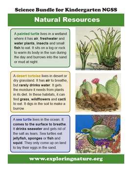 Natural Resources That Living Things Need - Kindergarten NGSS