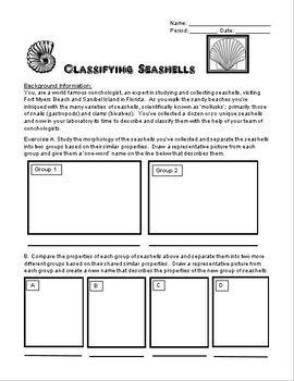 The Nature of Science EdVenture - Seashells Classifying MiniUnit