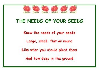 The Needs of Your Seeds