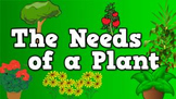 The Needs of a Plant (video)