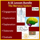 The Nervous System - 5E Lesson Bundle