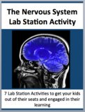 The Nervous System - 7 Engaging Lab Stations