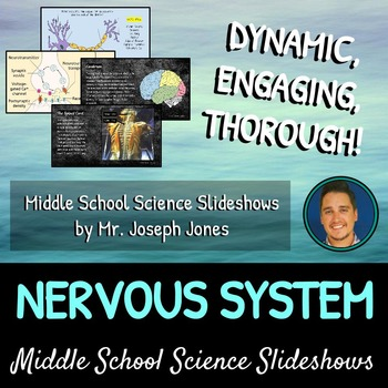 The Nervous System: A Life Sciences Slideshow!
