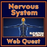 The Nervous System - A WebQuest - Made in Google Docs (New