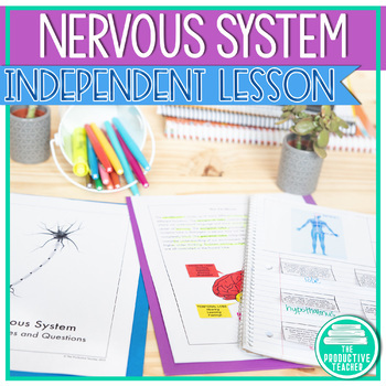 The Nervous System - Complete Indepedent Lesson