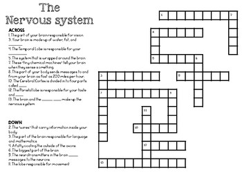 The Nervous System Crossword
