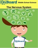 The Nervous System-Interactive Lesson
