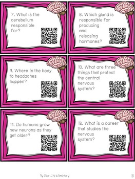 The Nervous System {QR TASK CARDS}