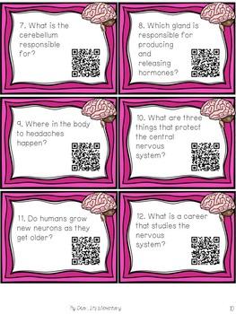 The Nervous System {QR TASK CARDS}