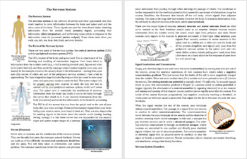 The Nervous System Reading Comprehension Article - Grade 8 and Up