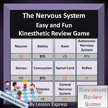 The Nervous System Terminologies -- Kinesthetic Review Game