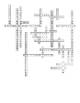 The Nervous System and other Senses Crossword for Biology II