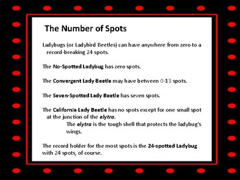 The Number of Ladybug Spots plus Other Facts & Questions