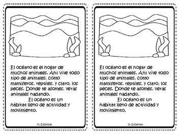 The Ocean - El océano - in Spanish