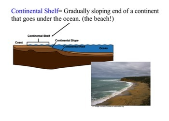 The Ocean Floor SMART notebook presentation