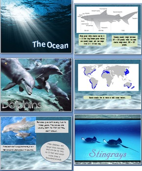 The Ocean Powerpoint