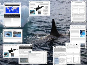 Informational Writing - Killer Whales