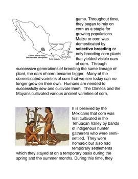 The Origin of Maize Common Core Activity