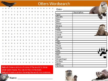 The Otter Otters Wordsearch Sheet Starter Activity Keywords Cover Animals Nature