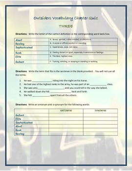 The Outsiders Novel Unit Study and Activities