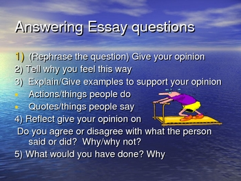 Outsiders, by S.E. Hinton-Writing Essay Questions