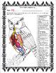 The Owl's Anatomy 2