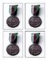 The PDSA Dickin Medal Handout