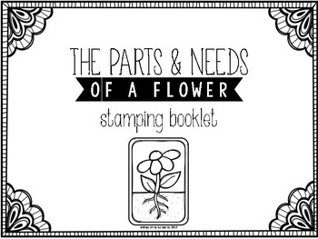 The Parts and Needs of a Flower