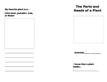The Parts and Needs of a Plant Brochure