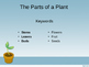 The Parts of a Plant eBook Powerpoint