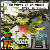 The Parts of the Apple Tree Craft and Teacher Read Aloud