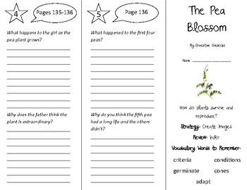 The Pea Blossom Trifold - 4th Grade Literacy by Design Theme 4