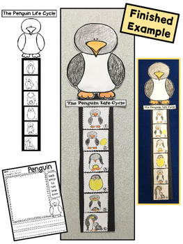 The Penguin Life Cycle for Kindergarten {Emergent Reader and Activities}