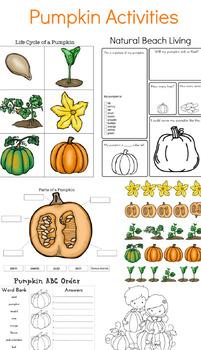 The Perfect Pumpkin Activities for Kids
