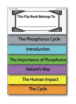 UPDATED! The Phosphorus Cycle Interactive Flip Book and Quiz