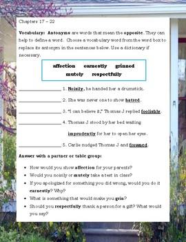 The Pinballs by Betsy Byars ELA Novel Reading Literature Study Guide
